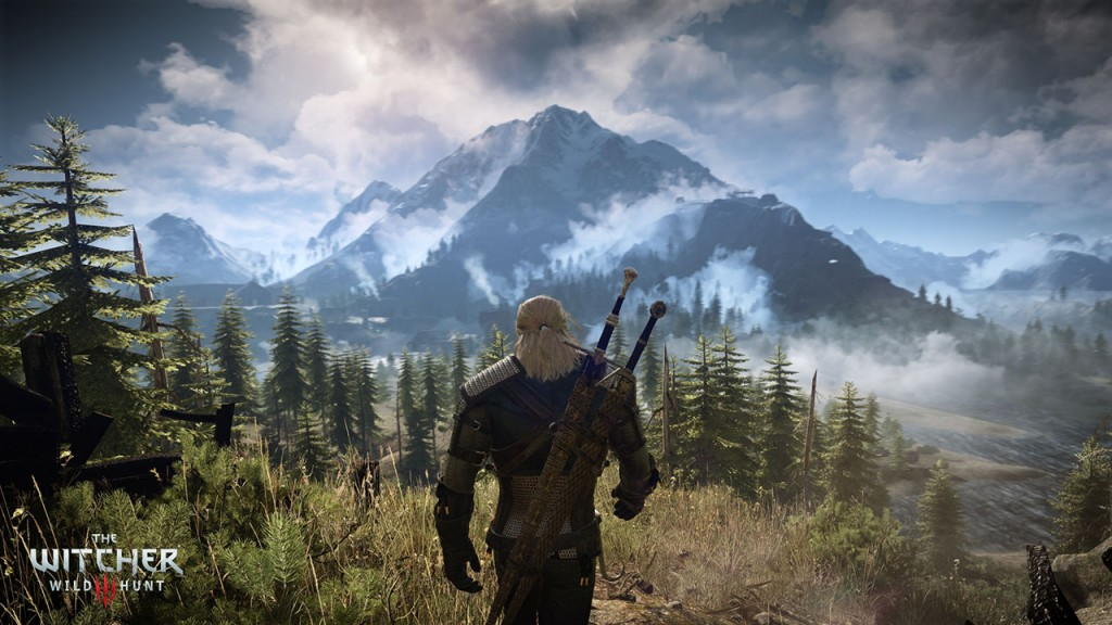 The Witcher 3 Wild Hunt landscape